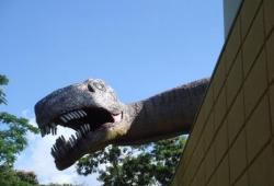 Visita ao Museu de Ciências Naturais Puc Minas - 2008